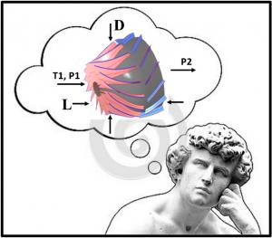 Thinker- 2-26-2015