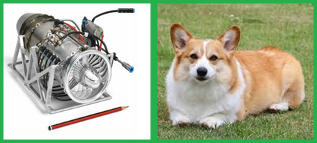 Micro Gas Turbine and Corgi