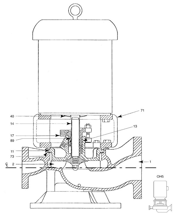 in line Pump - Figure 1