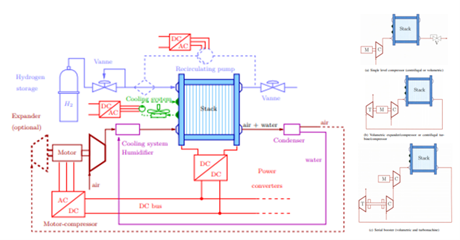 Fuel cell compression system topologies